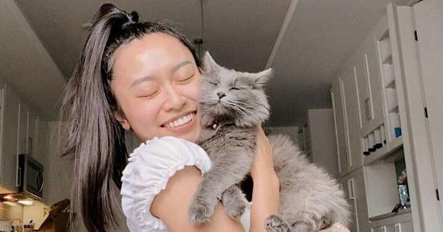 harrie le chat gris avec sa maîtresse