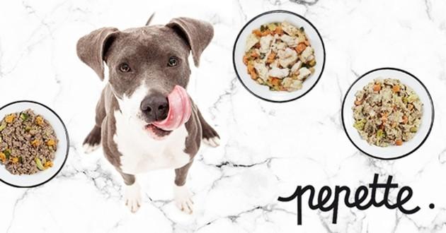 nourriture pour chien Pepette