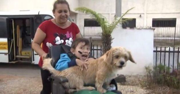 petit garçon dans un fauteuil roulant avec son chien sur les genoux