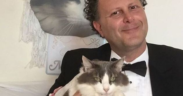homme chat mariage