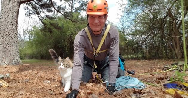 homme qui sauve les chats