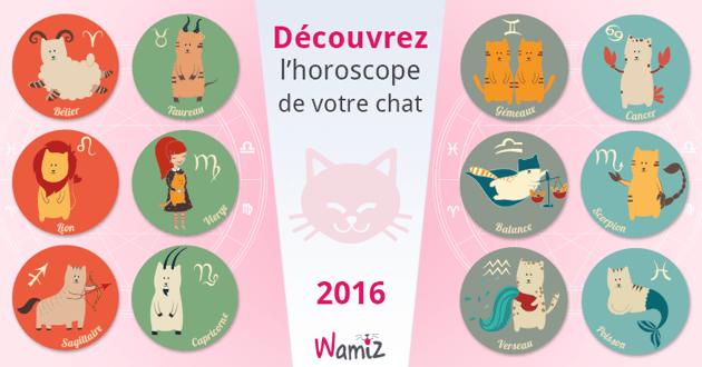 Découvrez ce que réserve 2016 à votre chat grâce à son horoscope !