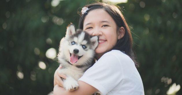 petite fille et chien husky