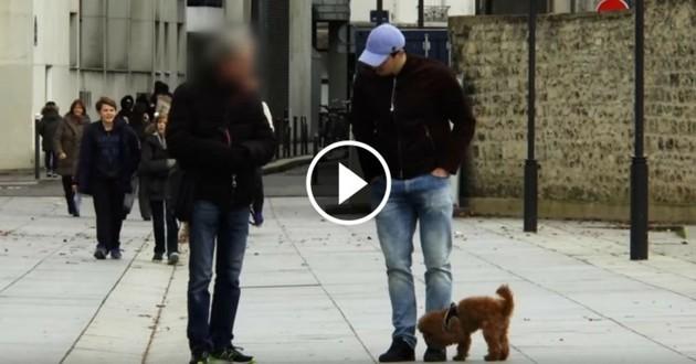 expérience sociale vendre son chien