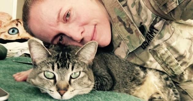 chatte soldat armée