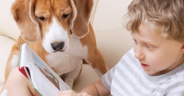 Pratique courante aux Etats-Unis, les chiens qui encouragent les enfants à s'améliorer en lecture