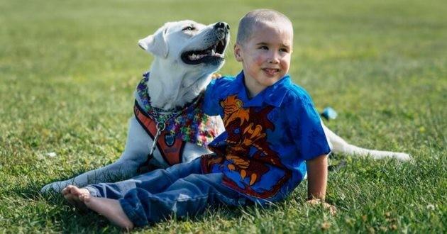 Enfant autiste chien