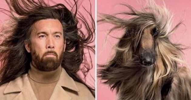 photos chiens qui ressemblent à leur maître