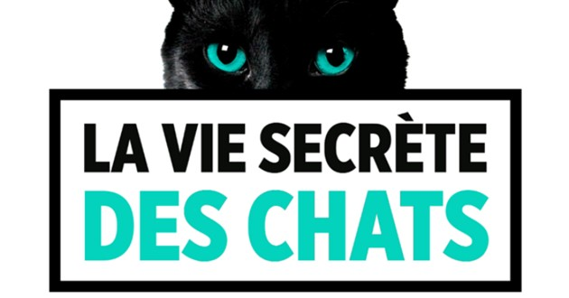 la vie secrète des chats saison 3