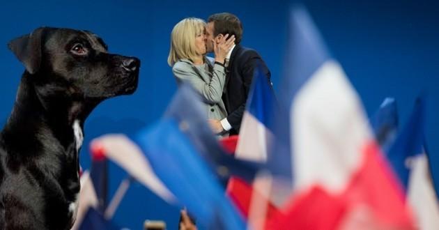 Macron chien Elysée