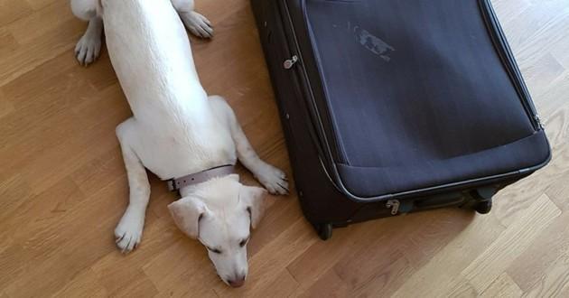 Malinka vacances valise