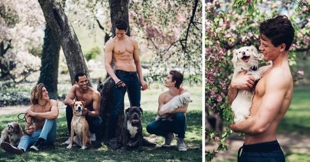 Mannequins et chiens posent ensemble pour des photos