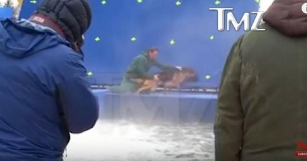 mes vies de chien tournage film