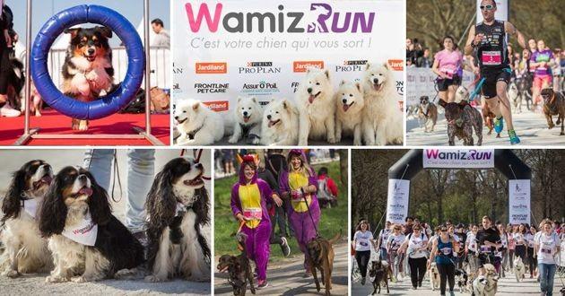 wamiz run 2019