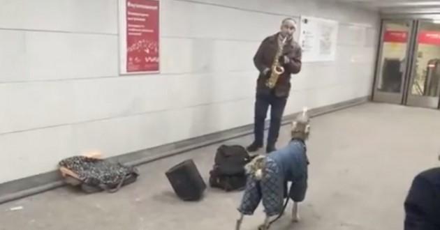 chien et son maître dans le métro