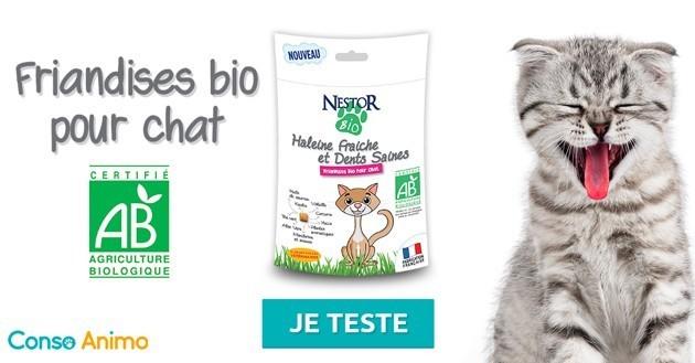 Testez gratuitement les friandises pour chat NestorBio !