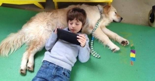 chien enfant autiste