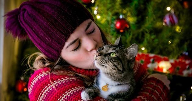 Noël avec les animaux