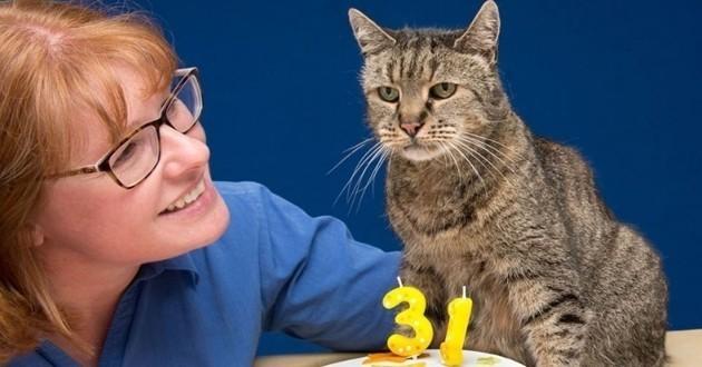 Nutmeg chat plus vieux du monde