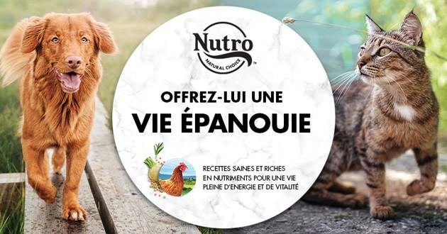 Interview de Alix Laporte-Maynadier, responsable marketing de la marque Nutro™