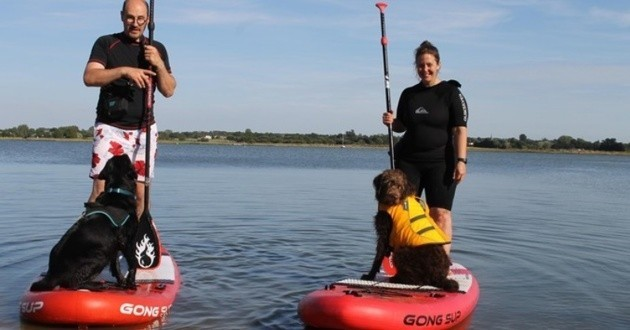 Le paddle un sport à pratiquer avec votre chien