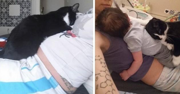 Tombé sous le charme de son humain avant sa naissance, ce chat est maintenant son ange gardien