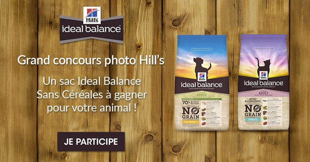 concours Hills