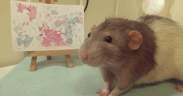 un rat avec le tableau qu'il a peint