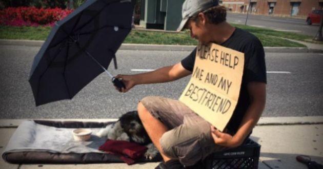 personne à la rue avec son chien