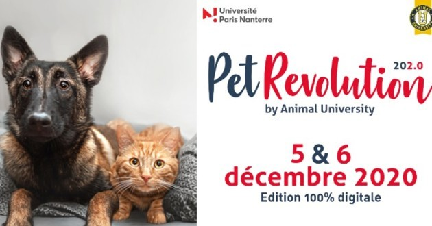 Pet revolution 2020
