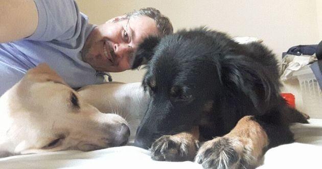 prêtre qui recueille les chiens des rues