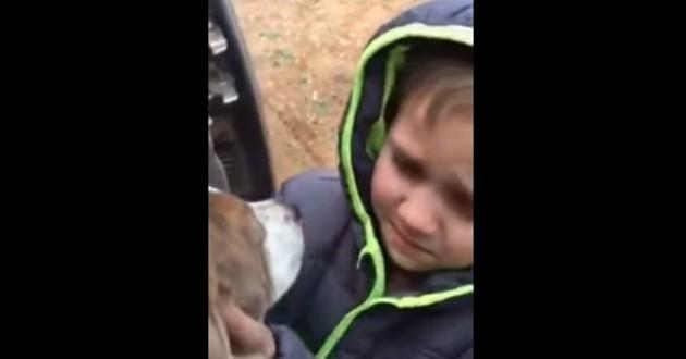 chien petit garçon