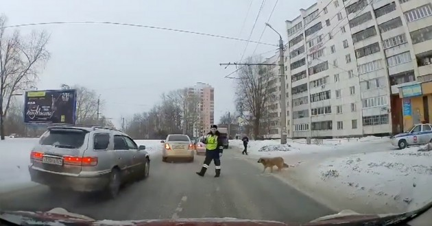 policier qui arrête les voitures