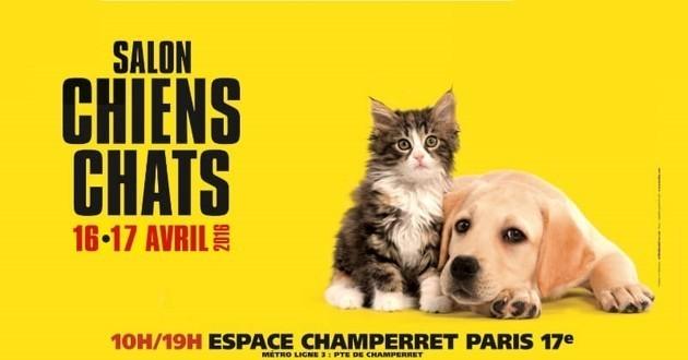 Venez à la rencontre de vos animaux préférés avec le salon Chiens Chats