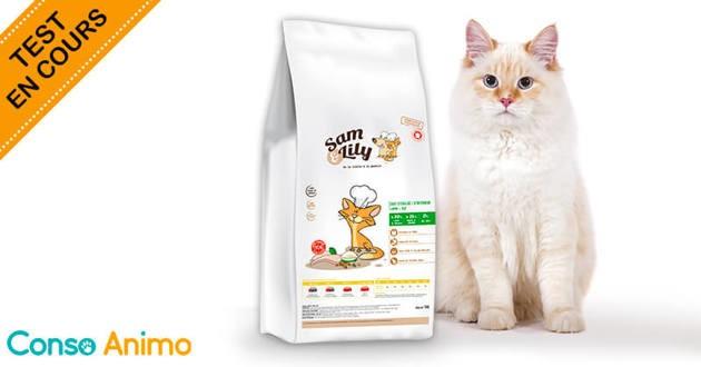 Vous avez un chat stérilisé et vous souhaitez lui offrir ce qu'il y a de meilleur ? Passez aux croquettes Sam & Lily !