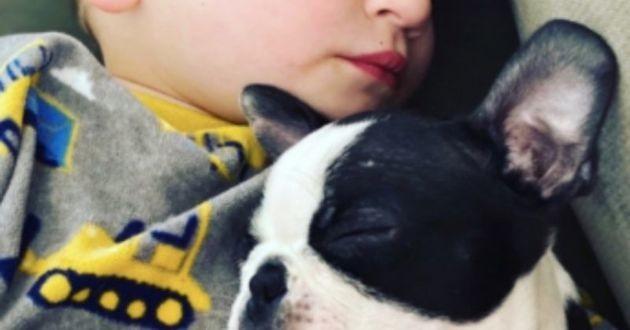 Ce bébé et son chien ont la même maladie