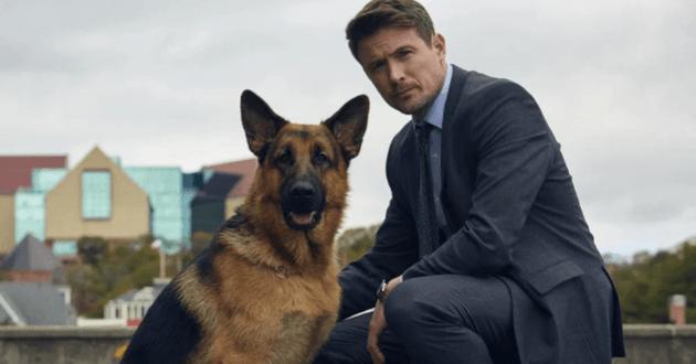 La série Rex, chien flic revient