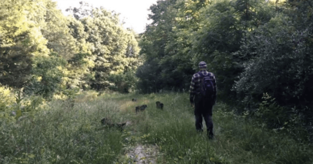 Le retraité avec ses chiens