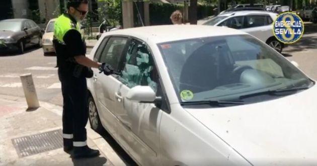 La police cassant la fenêtre de la voiture pour libérer le chien