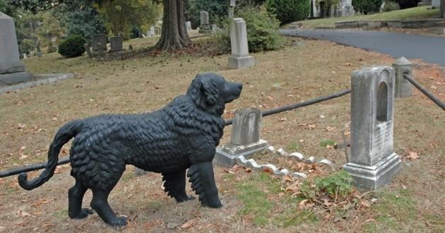 cimetière pour animaux