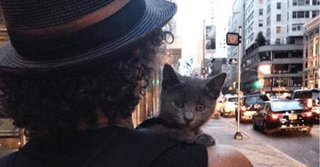 Il se promène avec son chat à l'épaule