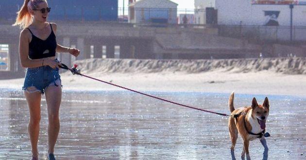 Une femme promenant son chien