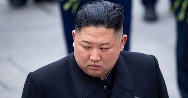 Le dictateur coréen oblige ses habitants à donner leurs chiens pour qu'ils soient mangés