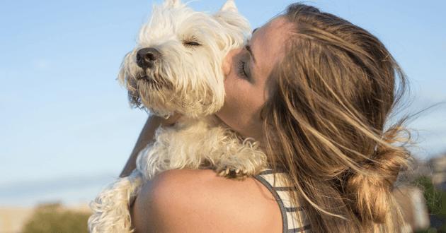Embrasser son animal de compagnie
