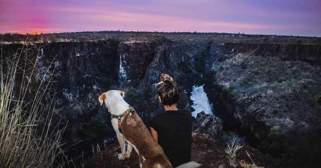 Elle sauve un chien en Afrique et lui fait faire le tour du monde
