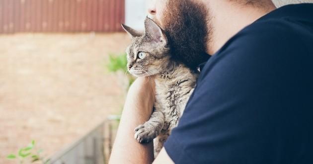 un chat et son maître