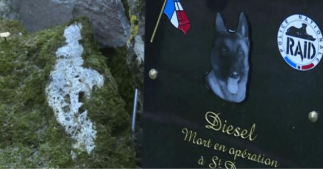 Diesel repose en paix comme le montre les premières images de sa sépulture
