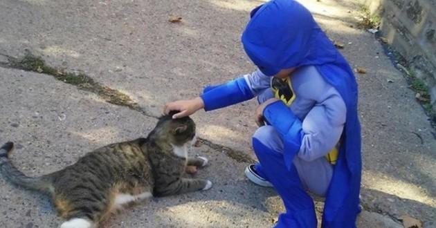 petit garçon chat errant