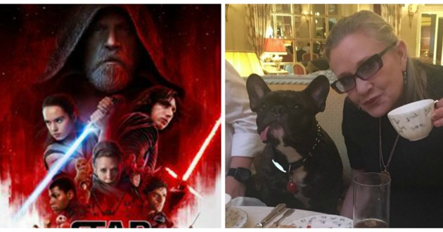 star wars 8 chien carrie fisher