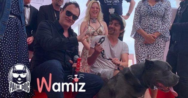 Tarantino remporte la Palm Dog Wamiz au Festival de Cannes